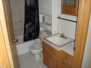 One of the existing bathrooms